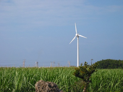 Wind_plant_5